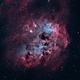 IC 410 Tadpoles Nebula,                                John Travis