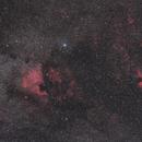 Cygnus Region,                                Tamas Kriska