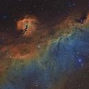 Ic2177- la nébuleuse de la mouette-SHO,                                astromat89