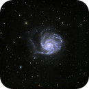 M101,                                Dave59