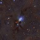 NGC 1333-2019,                                Bob J