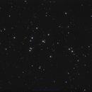 Messier 44, the Beehive Cluster,                                Robert Huerbsch