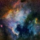 North American and Pelican Nebula,                                Satwant Kumar