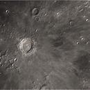 Copernicus,                                Steve Siedentop