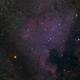 NGC 7000,                                Scotty Bishop