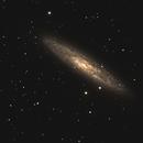 La galaxie du Sculpteur (NGC 253),                                Philastro