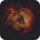SH2-275 - Rosette Nebula,                                Doug MacDonald