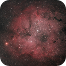 IC1396,                                Psion
