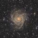 IC342,                                Matthew Chan