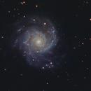 M74,                                Peter Goodhew
