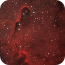 IC 1396A - The Elephant's Trunk Nebula.,                                Sergei Sankov