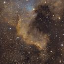 North America Nebula,                                Hasan Oktay ÖNEN