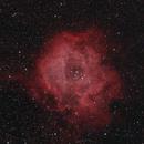 Rosette Nebula,                                Mike Lloyd