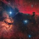 The Horsehead Nebula Ha:Oiii:RGB HDR | IC 434,                                Luca Fornaciari