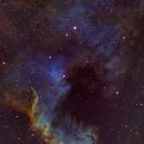 NGC 7000  The North America Nebula, SHO,                                riot1013