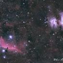 M42 and Horse Head Nebula,                                wei-hann-Lee