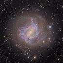 M83  Southern Pinwheel Galaxy,                                noodle