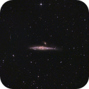 NGC4631 The Whale Galaxy,                                Emilio Zandarin