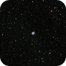 M57 The Ring Nebula. The first light of a new camera.,                                Nikolay Surovtsev