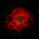 C49 Rosette Nebula (Ha),                                Gilbert Ikezaki