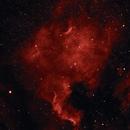 North America Nebula (NGC7000) in Ha,                                Craig Gardiner
