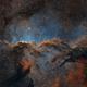 Nebula Wars: The Dragons of Ara in Hubble palette,                                Bogdan Borz