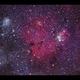 Accidental snap shot of the Christmas Tree Cluster and Dreyer's Nebula,                                Göran Nilsson