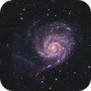 M101 and more,                                pmneo