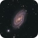"M109 ""Widefield"" with interesting companions,                                Stephan Linhart"