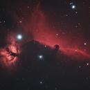 The Horsehead Nebula and Flame Nebula,                                Trevor Jones