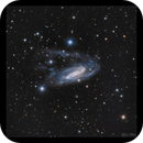 NGC3981,                                Göran Nilsson