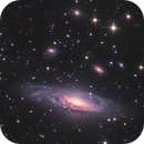 """NGC 7331 and Friends - HaLRGB - 30+ Hours - ONTC 8"""" Newtonian - ASI1600MM,                                Rowland Archer"""