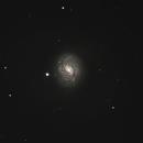 M77,                                Hap Griffin