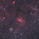 2016 M52 NGC7635 Aut+Aut with Scopos APO TL805 + WO 0.8X + 550D,                                Rocco Parisi