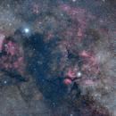 Heart of Cygnus ,                                Bill Mark