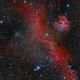 IC 2177 - Seagull Neubula,                                Mirko M