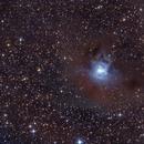 NGC 7023 Iris nebula,                                Edo72