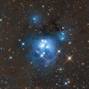 NGC 7129,                                Daniel Nimmervoll
