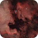 NGC7000 Project,                                George Costanza