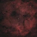 IC1396 - Elephant's Trunk,                                Tony