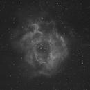 Nebulosa Roseta,                                Miquel