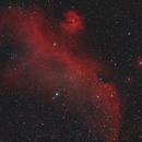 Seagull nebula,                                Franco Floris