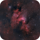 SH2-155 Cave Nebula,                                Chad Andrist
