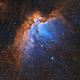 NGC 7380,                                Prath Pavaskar