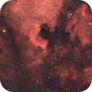 NGC 7000 HA+RGB,                                Andres Noriega
