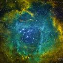 NGC 2244 ROSETTE NEBULA,                                josephuy@gmail.com