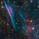 NGC 2736 - Pencil Nebula aka. Herschel's Ray,                                Miles Zhou
