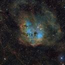 Tadpoles Nebula,                                litobrit