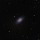 "M64 ""Blackeye Galaxy"",                                Thomas Fechner"