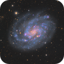NGC 300 - The Sparkling Galaxy,                                Connor Matherne